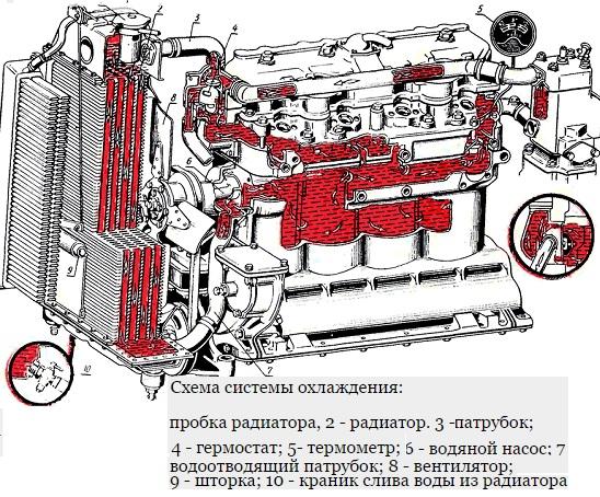 системы охлаждения МТЗ 82