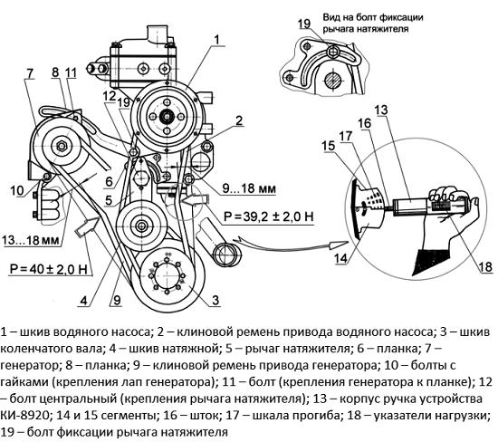 ремни трактора мтз устройство